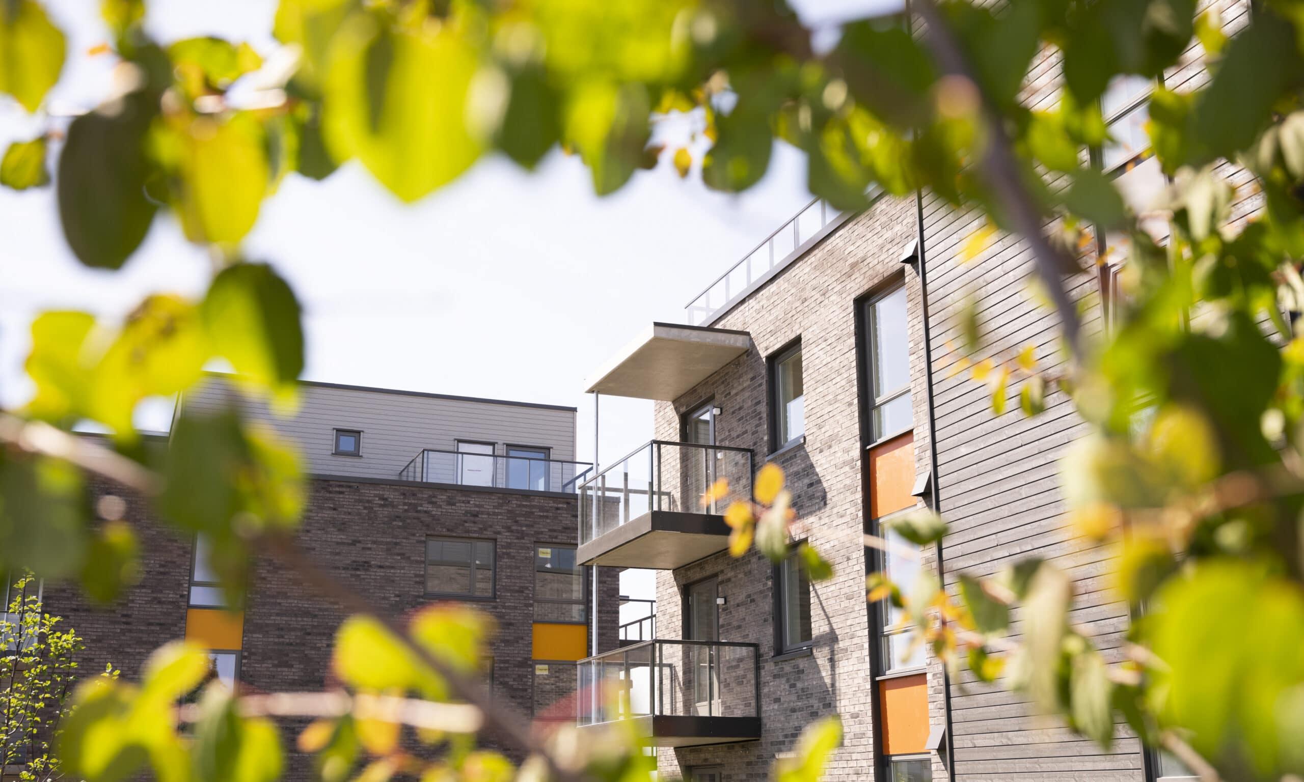 Svanemerkede boliger bygget av JM, Prestrødalleen i Tønsberg.